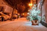 Zima w Międzychodzie: Widzieliście te zdjęcia? [GALERIA ZDJĘĆ]