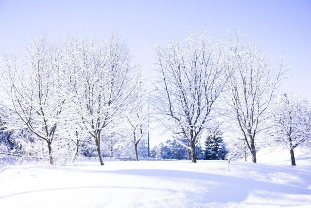 Zima w ostatnich dniach zdecydowanie nie odpuszcza