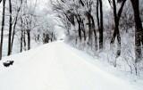 - Zimą drogi w gminie Koczała są w tragicznym stanie - mówi radny Mariusz Patejuk