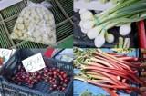 Bochnia. Ceny owoców i warzyw na placu targowym przy Hali Gazaris w Bochni, 16.06.2021 [ZDJĘCIA]