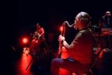Koncert Provinz Posen online - elektronika i muzyka źródeł