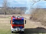 Pożar traw na osiedlu Gądki w Jaśle. Strażacy musieli gasić podpalone nieużytki przy Wisłoce [ZDJĘCIA]