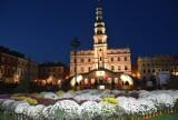 Chryzantemy na Rynku Wielkim w Zamościu. Samorządy włączyły się w akcję pomocy producentom i sprzedającym kwiaty [ZDJĘCIA]