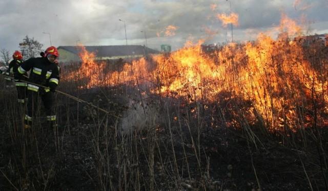 Nie wolno na swoich posesjach wypalać nic bez zezwolenia strażaków