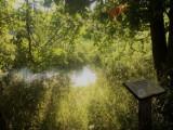 Wakacje to dobry czas na odwiedziny parku w Gołuchowie ZDJĘCIA