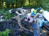 Leśnicy z Nadleśnictwa Durowo opublikowali zdjęcie sterty śmieci, którą ktoś wyrzucił do lasu...