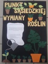 Punkt Sąsiedzkiej Wymiany Roślin. Nowe miejsce w Warszawie, gdzie można adoptować rośliny