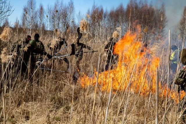 Gaszenie pożaru w Biebrzańskim Parku Narodowym trwało tydzień od 19.04.2020 do 26.04.2020.