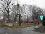Cmentarz żydowski Żory: Remont najstarszej nekropolii [ZDJĘCIA]