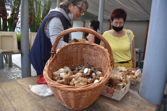 Na tarnowskim Burku można już kupić grzyby zebrane w podtarnowskich lasach