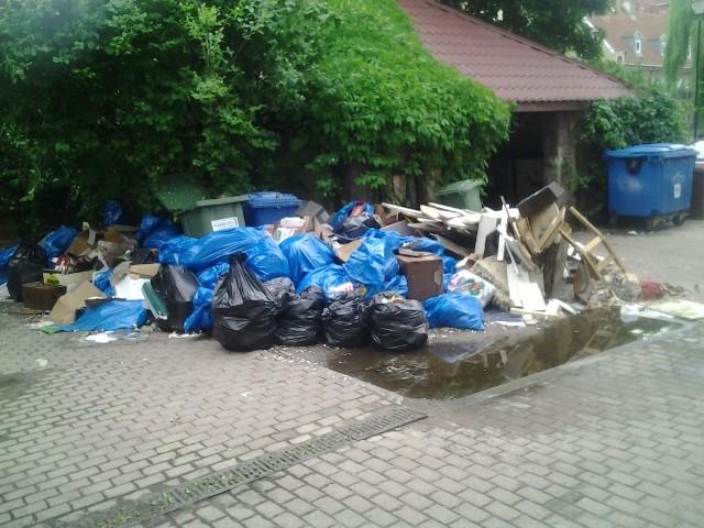 Sterty śmieci zalegają od miesięcy, nikt nie poczuwa się do odpowiedzialności..