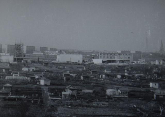 Budowa biurowca widziana od strony ogródków działkowych
