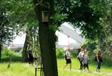 Słoneczne popołudnie w Parku Ludowym w Lublinie. Zobacz zdjęcia