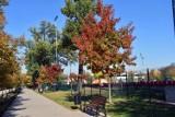 Pogoda wariuje. W środku jesieni znowu będzie... lato! Na termometrach nawet 24 stopnie!