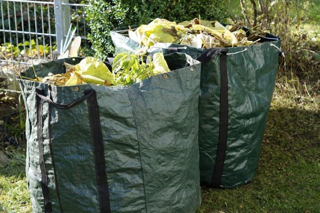 Od lipca zmianie miała ulec m.in. segregacja bioodpadów na zielone (ogrodowe) i kuchenne. Nierozstrzygnięcie przetargu opóźni jednak wejście nowych zasad w życie. Radni będą głosować poprawkę, która ma wyznaczyć nową datę na 1 września