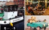 Drugi weekend sierpnia w Bydgoszczy - zobacz plan imprez [zdjęcia]