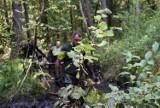 Oznaczenia trasy Biegu Katorżnika zaśmiecają las? Radny apeluje o ich posprzątanie