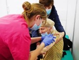 Gdzie uderzy czwarta fala koronawirusa? Te gminy w Wielkopolsce są najbezpieczniejsze. Tu zaszczepiło się najwięcej osób