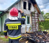 W Nowogardzie spłonęła altana. Straty będą duże [ZDJĘCIA]