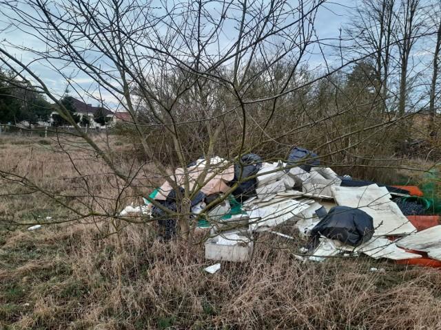 Luciny: mieszkańcy sprzątają w swojej wsi, a ktoś przed samymi świętami podrzuca im hałdę śmieci!