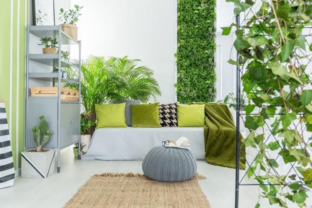 Warto włożyć nieco wysiłku, by udekorować wnętrze domu żywymi roślinami. Zobacz pomysły na ekspozycję kwiatów doniczkowych.