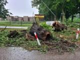 Zalania, drzewa na drodze i płonący nasyp - strażacy z powiatu mieli wczoraj sporo pracy