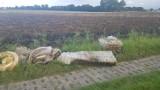 Powracający problem w gminie Cedry Wielkie - nielegalne wysypiska śmieci