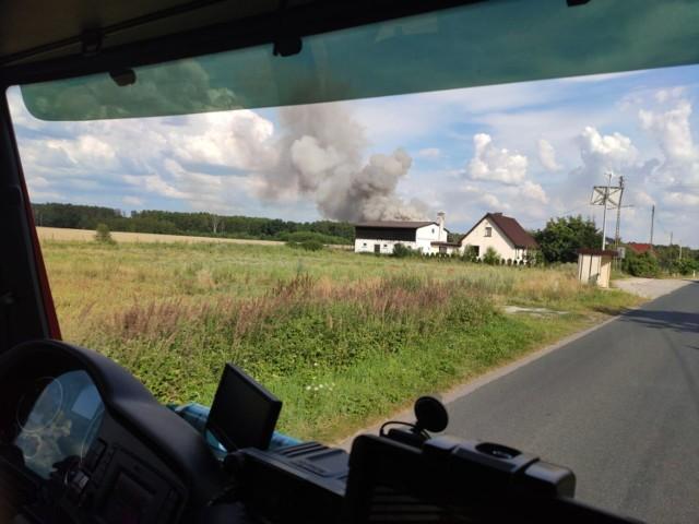 Pożar ścierniska pod Tarnowem