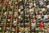 Blisko 500 osób weźmie udział w olimpiadzie. Zajęcia w UTW i zdrowy styl życia są dziś w modzie