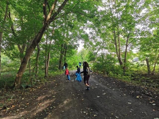 Mieszkańcy Żor będą sprzątać las w Gichcie