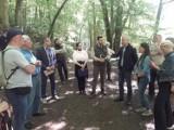 Gdańsk. Intensywna wycinka drzew i sytuacja Trójmiejskiego Parku Krajobrazowego tematem konferencji Pomorskiego Zespołu Parlamentarnego
