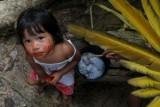 Na koronawirusa umierają rdzenni mieszkańcy puszczy amazońskiej. Dwukrotnie wyższa śmiertelność wśród tubylców