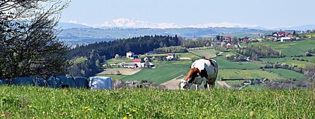 Pogórze oferuje nam kilkanaście miejscówek z cudownymi tatrzańskimi panoramami