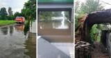 Podtopienia i zalania na Pomorzu! Nikt nie został ranny. Strażacy usuwali skutki ulew i burz
