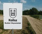 Budżet Obywatelski 2022 w Kaliszu. Takie projekty zgłosili kaliszanie
