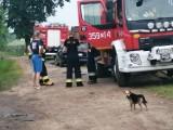 Uwaga na oszustów podających się za strażaków. Kiedy warto zachować czujność?