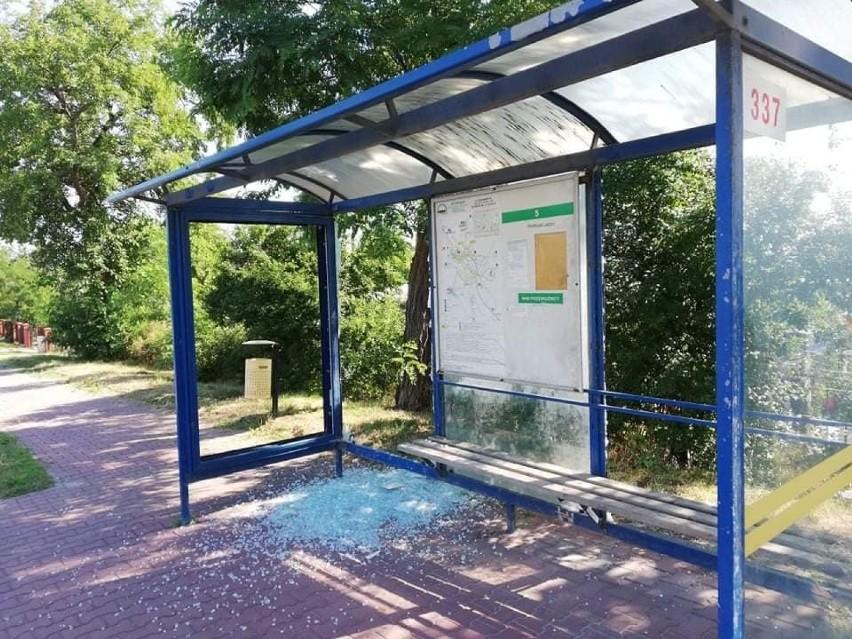 Na przystankach autobusowych przy ulicy Ostrowieckiej ktoś...