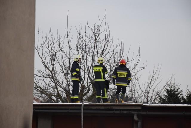 Pożar gołębnika na ulicy Widok w Kaliszu