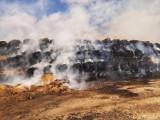 Wielki pożar słomy pod Bydgoszczą. Tak wyglądała walka z ogniem [zdjęcia]