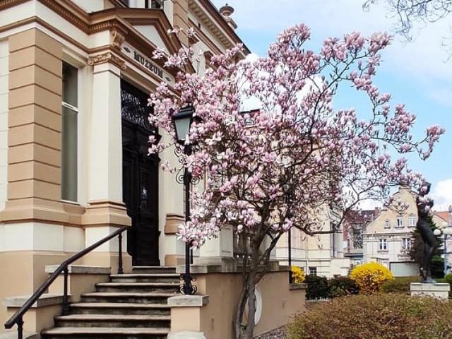 Muzeum Miejskie od 4 maja 2021 roku znów jest otwarte dla zwiedzających.