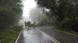 Burze pod Tarnowem i koło Bochni. Silny wiatr, intensywne opady deszczu i wyładowania atmosferyczne. Strażacy mają mnóstwo pracy [ZDJĘCIA]