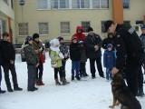 WOŚP 2013 w Tomaszowie: W orkiestrze zagrali także policjanci (zdjęcia)