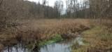 Gdzie na zimowy spacer w Lubelskiem? 10 propozycji