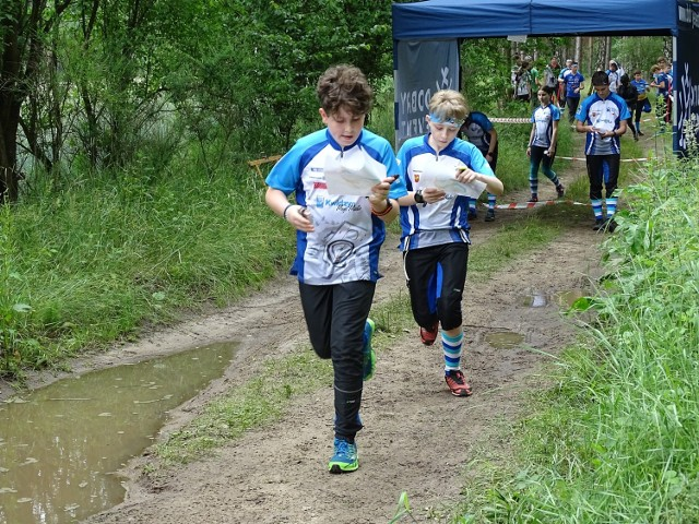W trzech weekendowych startach zawodnicy UMKS Kwidzyn zdobyli 43 medale.