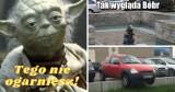 Memy o Dąbrowie Górniczej. Tak z miasta śmieje się internet. Może wy też się uśmiechniecie?