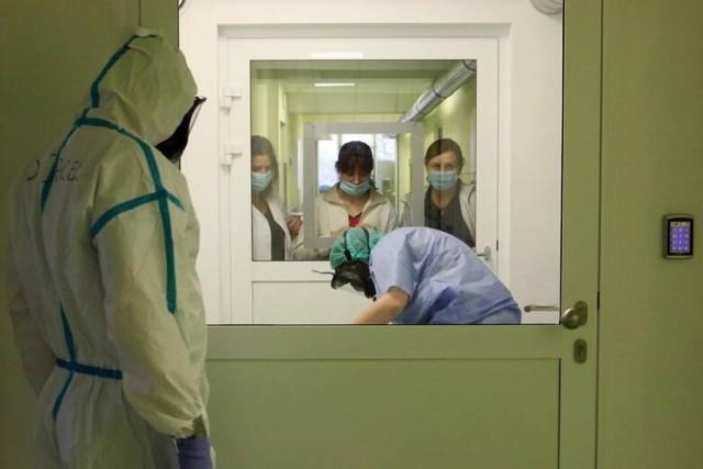 Szpitale wznawiają odwiedziny. W każdej placówce panują inne zasady