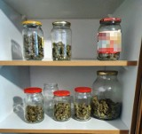 Narkotyki zamiast konfitur. 28-latek w szafce ze słoikami trzymał susz konopny