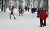 Duszniki-Zdrój: ponad 22 tysiące złotych kary za zorganizowanie nielegalnej imprezy podczas mistrzostw Europy w biathlonie