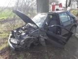 Rębielcz: Kierowca osobówki uderzył w drzewo. To już kolejny taki wypadek