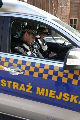 Wrześniowe interwencje straży miejskiej w Gdańsku. Jakie wykroczenia gdańszczanie popełniają najczęściej?